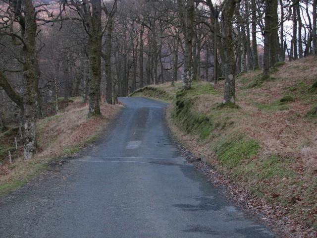 Loch Earn south shore road