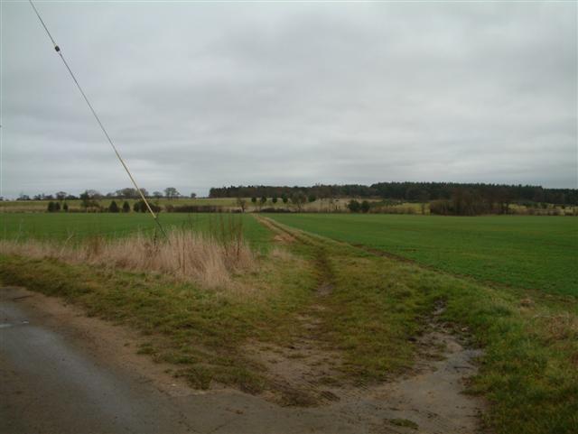 Footpath to Pusey, through Buckland Warren