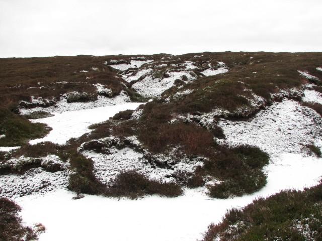 Peat haggs on Ton Eich