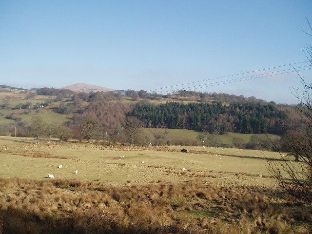 Tryweryn Valley ,Moel Emoel in distance