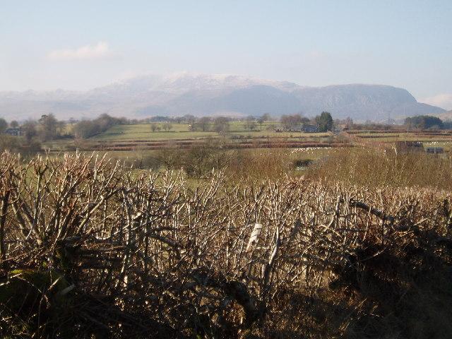 Arenig Fawr from near Rhyd-Uchaf