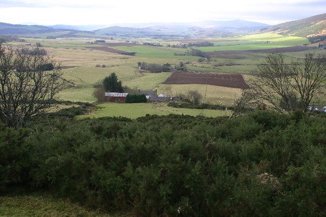 On Knockandy Hill