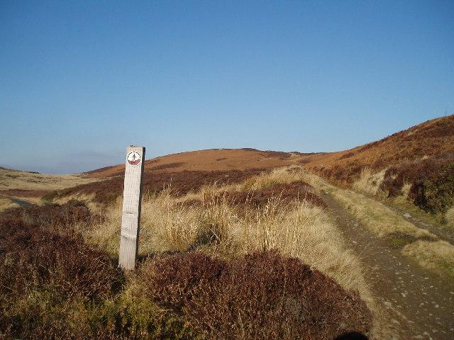 Track over Mynydd Nodol