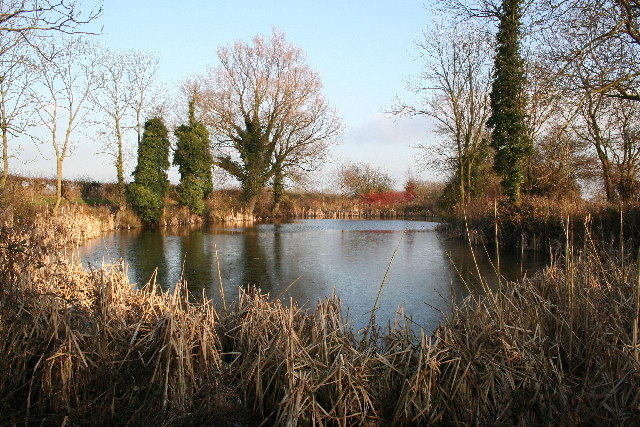Heapham pond