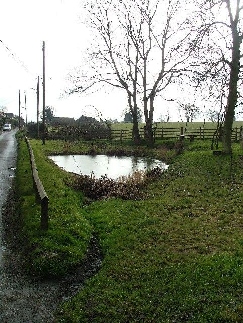 Streatley Village Pond.