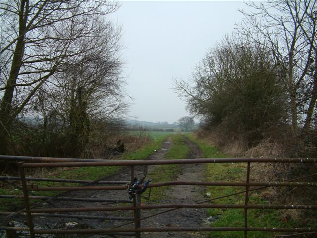 Track to Chiselhampton
