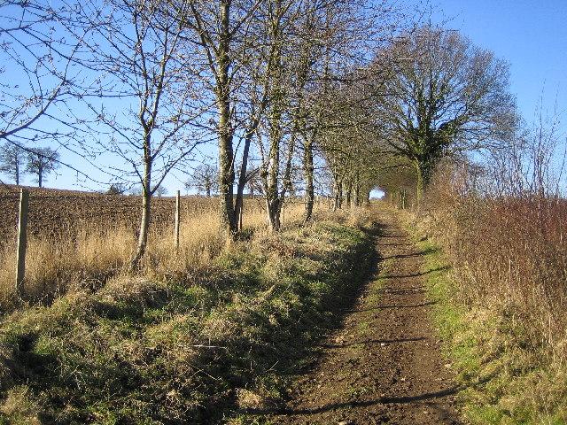 Chipperfield: Bridleway between Hunton Bridge and Bucks Hill