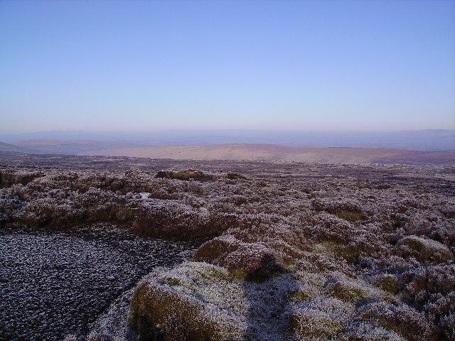 Frozen Moorland