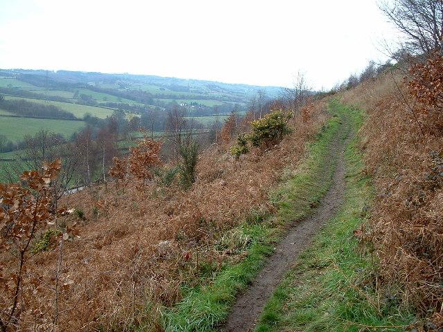 The Kirklees Way on Thornhill Edge