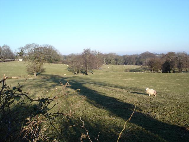 Henllan farmland