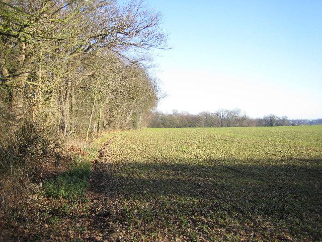 Hunton Bridge: Farmland
