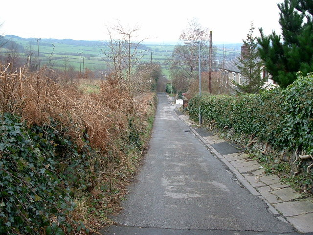 The Long Causeway, Thornhill