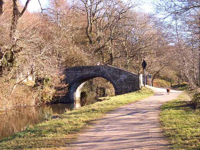 Canal accommodation bridge to Cwmbyr Farm