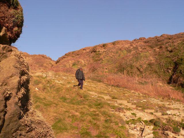 The Steps to Porth Ruffydd, Nr.Penrhosfeilw.