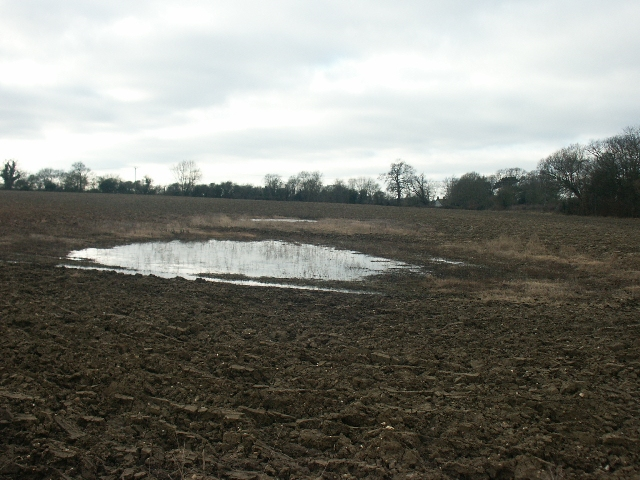 Frozen field pond, Swardeston