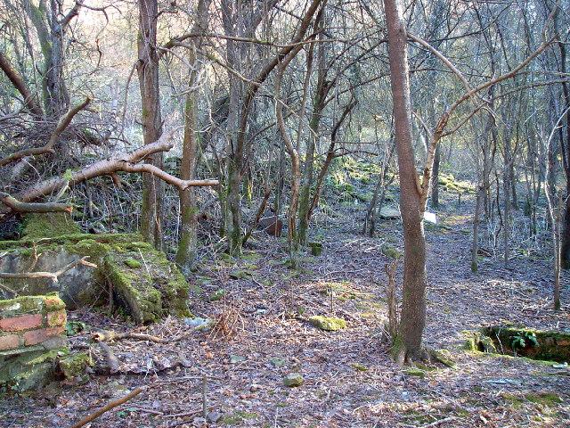 Ruins of Cwmbyr Farm