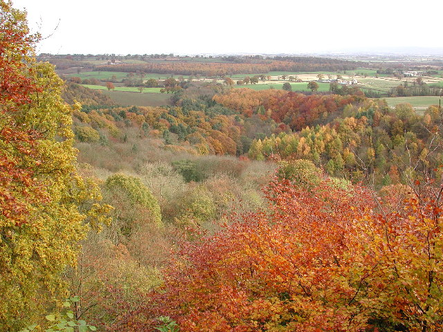 The Ure Valley from Mowbray Point