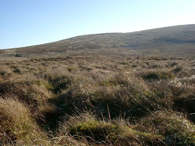 Grange Muir, looking to the northern slopes of Wedder Hill