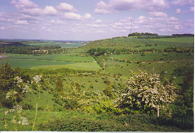 Cottington's Hill from White Hill.