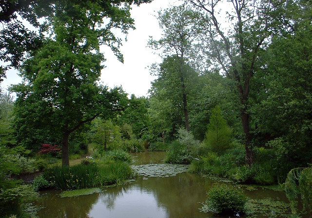 The Ornamental Pond