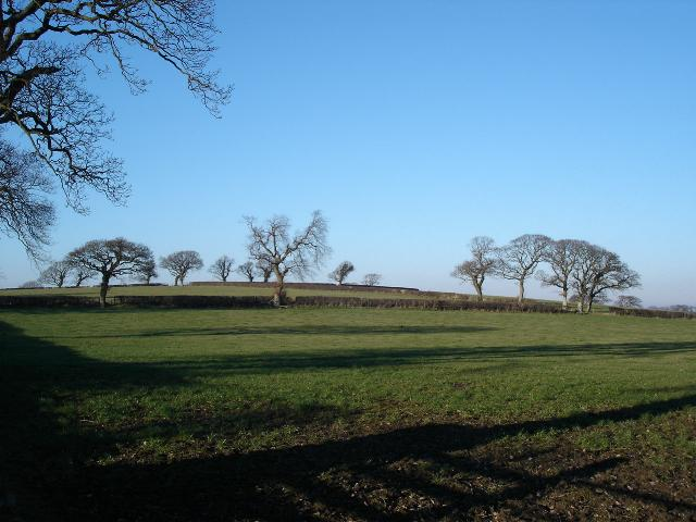 Winter sun on farmland