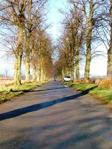 Roman Road, Over Dinsdale