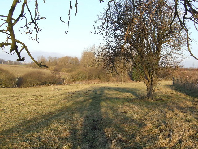 Nature reserve between Great Haseley and Little Milton
