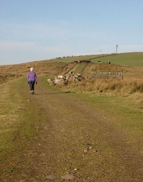 Track leading north to Burnhead