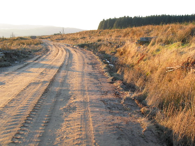 Forestry road above Glen Lussa, Kintyre.