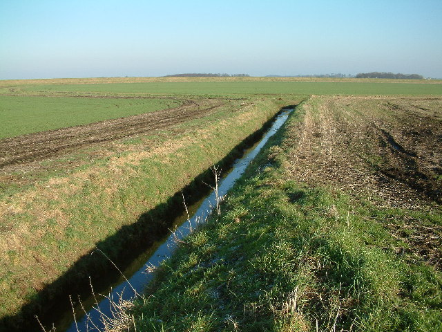 Leather Barrow's Ditch
