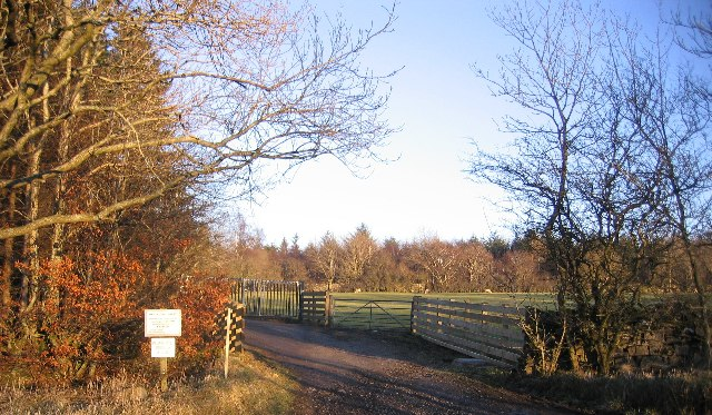 An Entrance to Greystoke Woods.