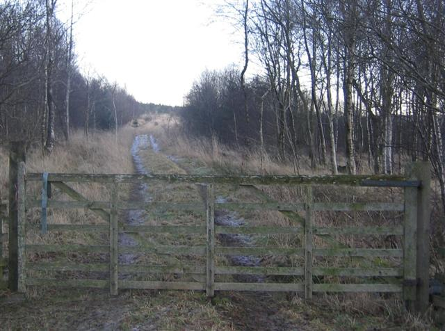 Gated entry to Howgill wood.