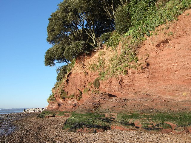 River cliff at Lympstone