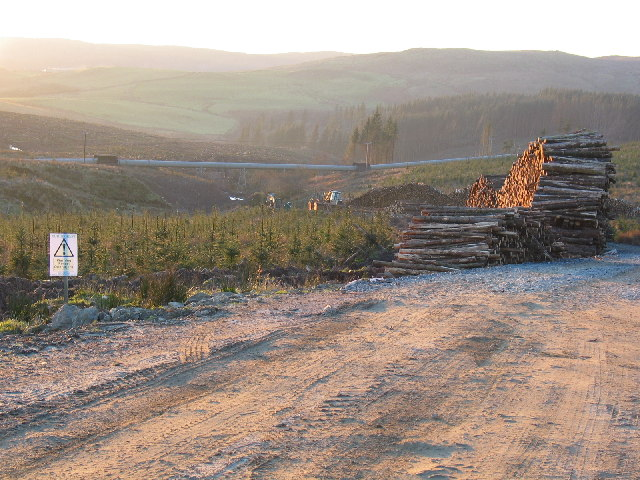 Felled trees stockpiled on forestry road near Lussa pipeline, Kintyre.