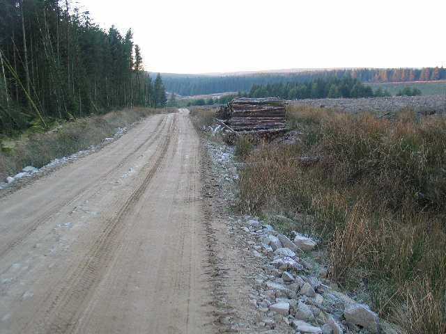 Forestry road and felled trees near to Lussa Dam.