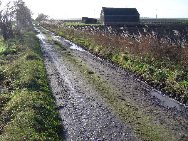 Track near Farcet Fen