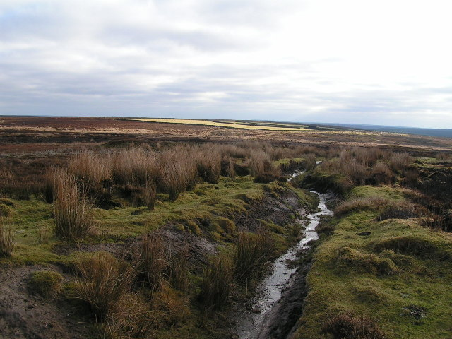 Hamer Moor
