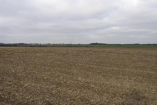Fields to the Horizon