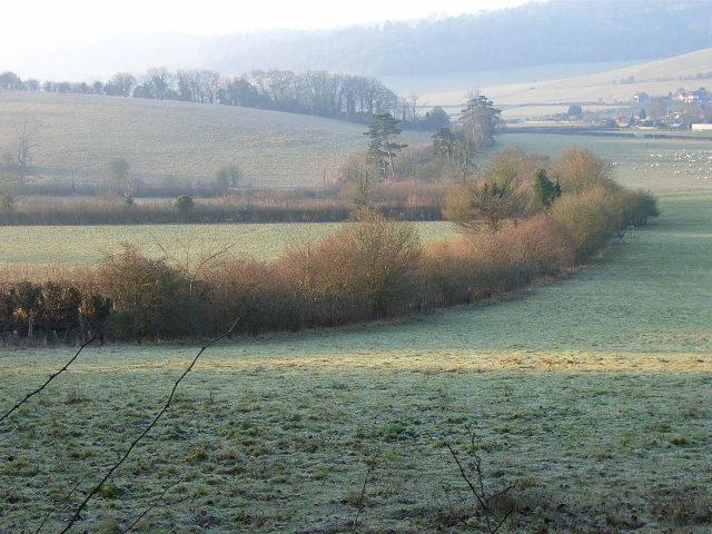 Farmland below Adam's Wood