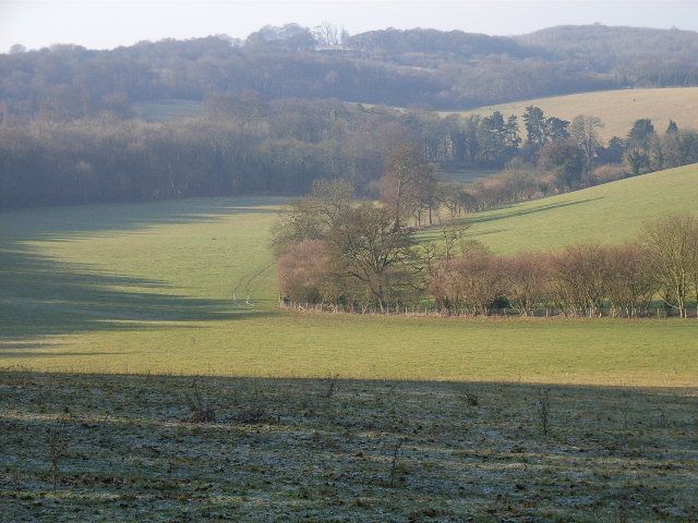 The valley below Howe Wood