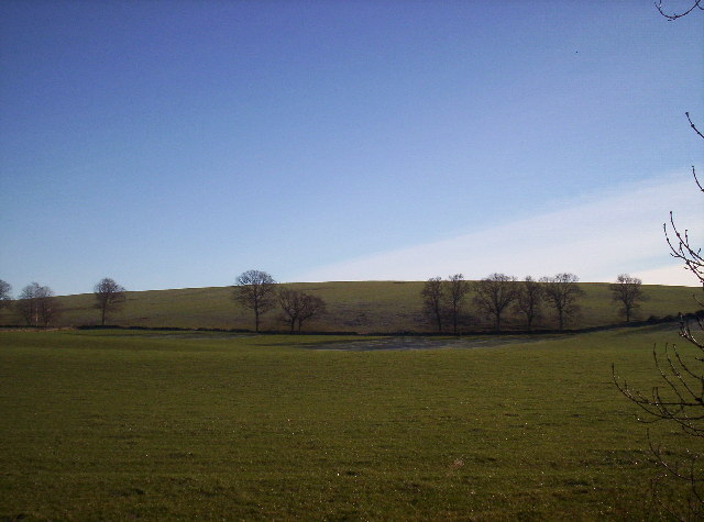 Fields on Tor Hill