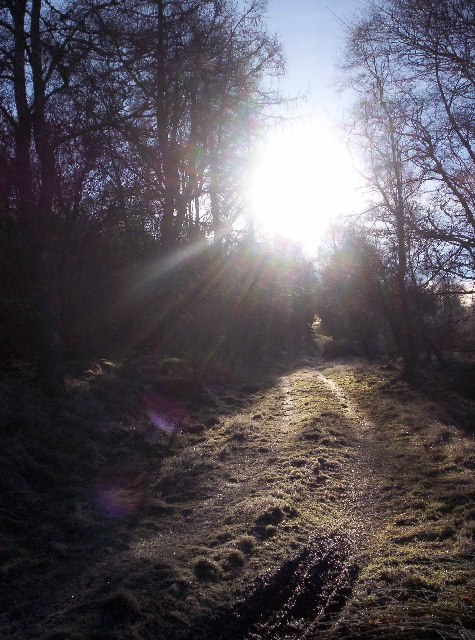 Track to Burn Farm