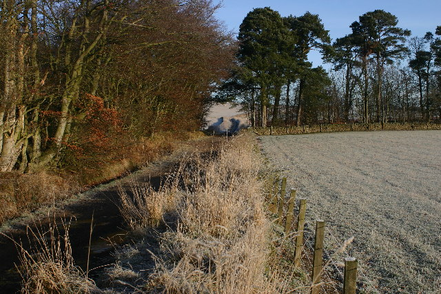 Track near Knock Hill