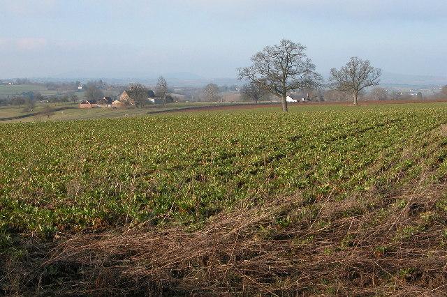 Bernithan Court Farm, Llangarron