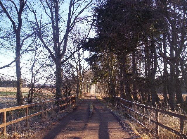 Track to Middleton Cottages