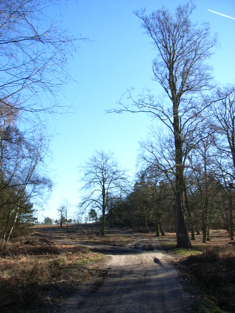 Wishmoor Cross, Bagshot Heath