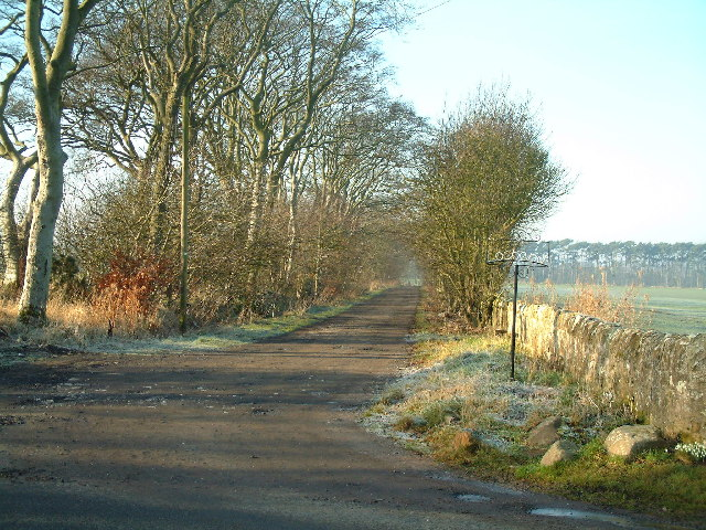The road to Lochend