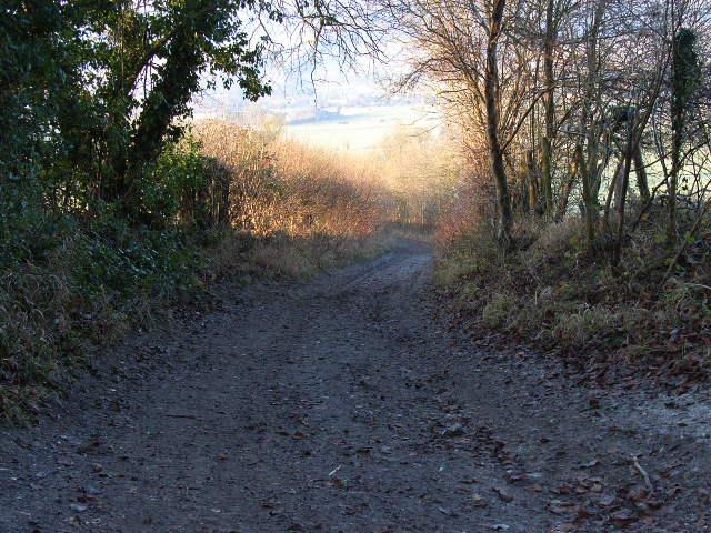Bridleway descending from Adam's Wood