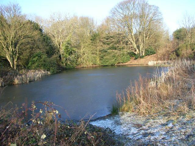 Frozen pond, Northend