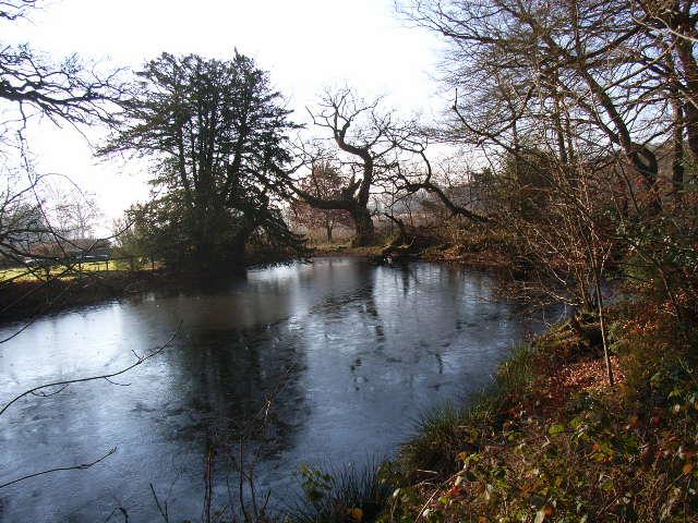 Icy pond at Hollandridge Farm